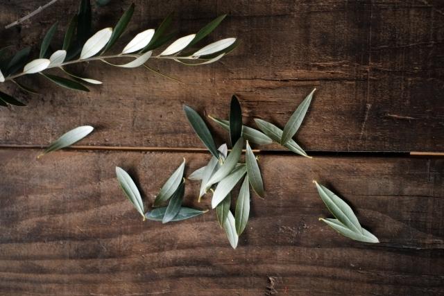 オリーブの葉抽出物